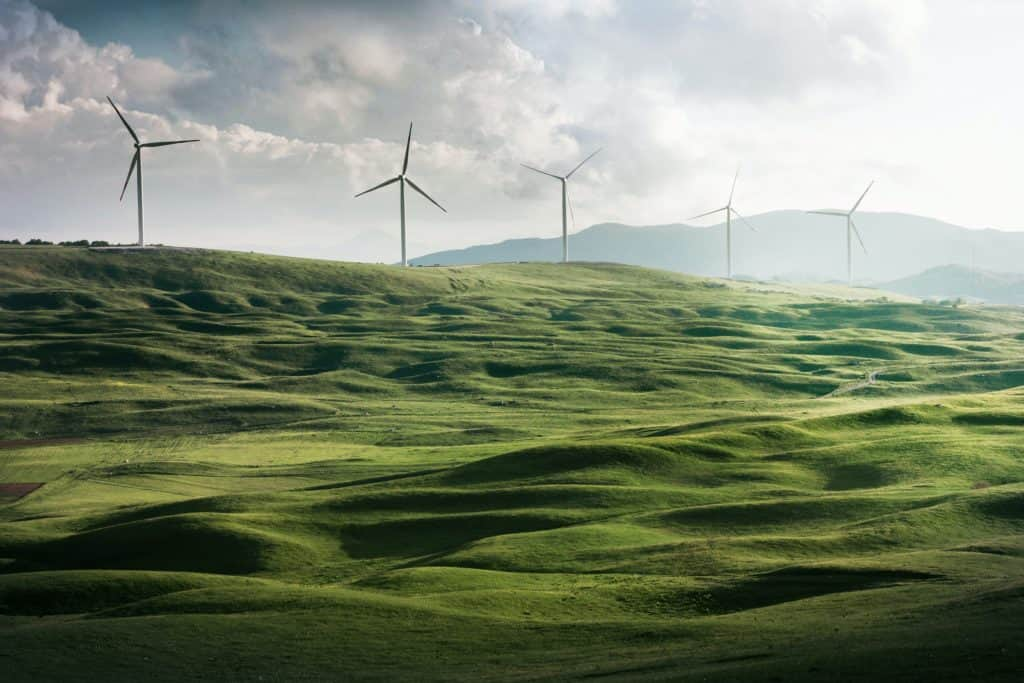wind turbines surrounded by grass