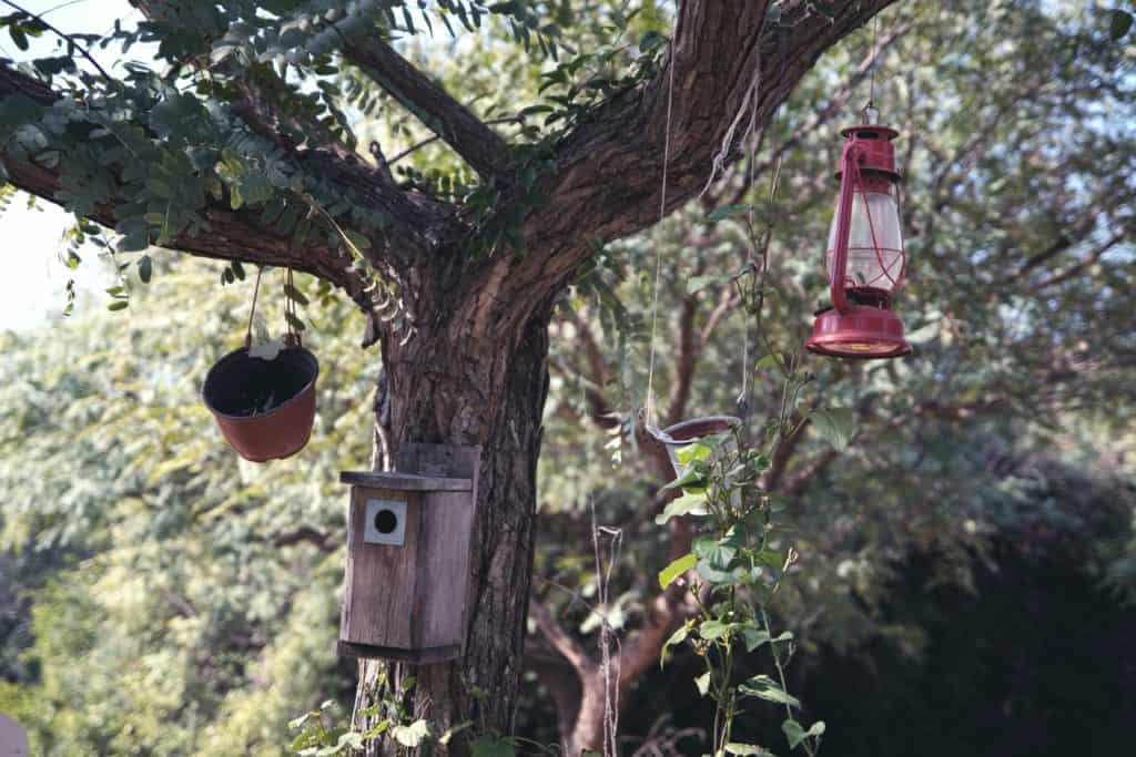 red and brown bird feeder
