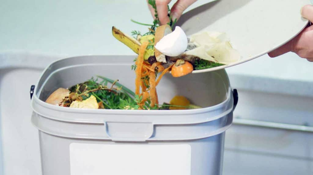apartment composting solutions